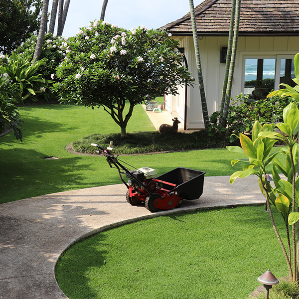 image of professional law mower in yard